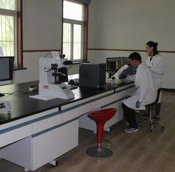 Metallographic test equipment