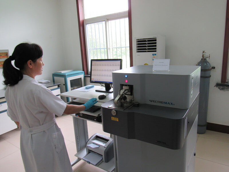 Piston ring type insert pump inspection